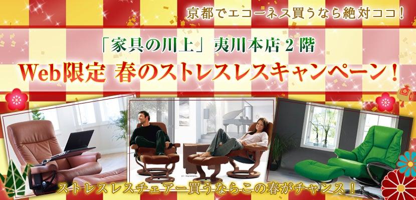 Web限定春のストレスレスキャンペーン!