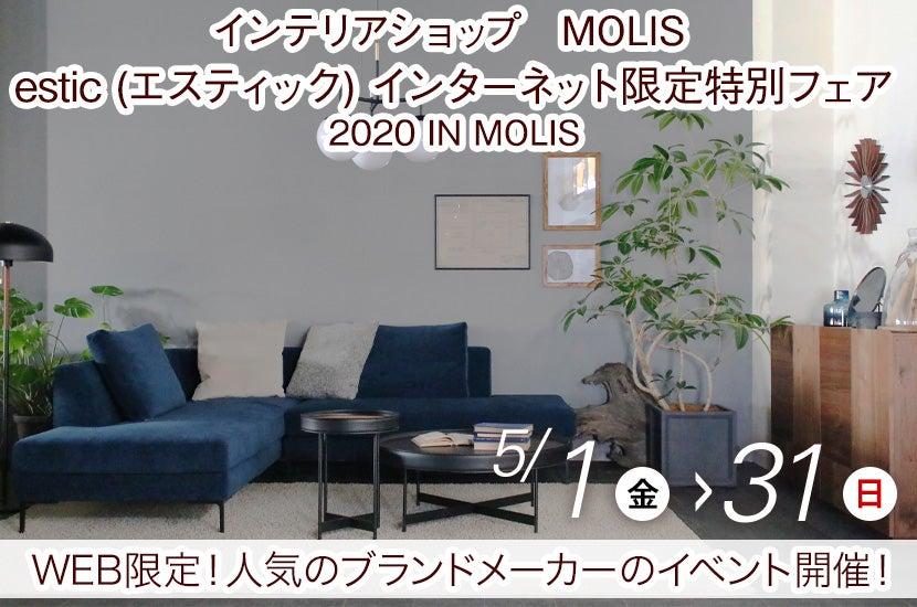 estic (エスティック)  インターネット限定特別フェア 2020 IN MOLIS