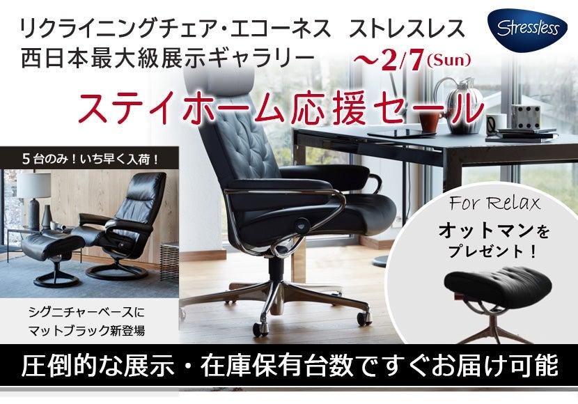 数量限定・大特価【ステイホーム応援セール】