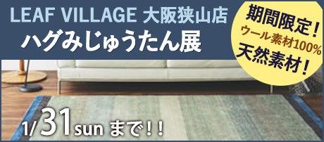 ハグみじゅうたん展 in 大阪狭山店