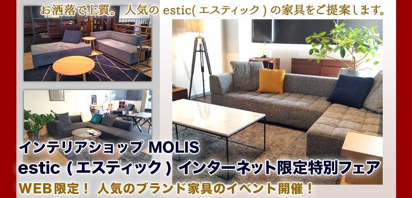 estic (エスティック)  インターネット限定特別フェア 2019 IN MOLIS