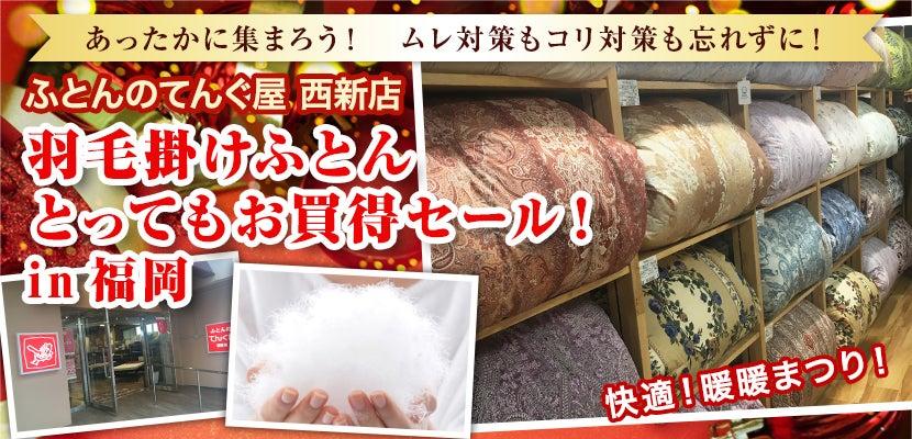 羽毛掛けふとん    とってもお買得セール !in福岡
